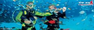 צלילה אקסטרים ישראל
